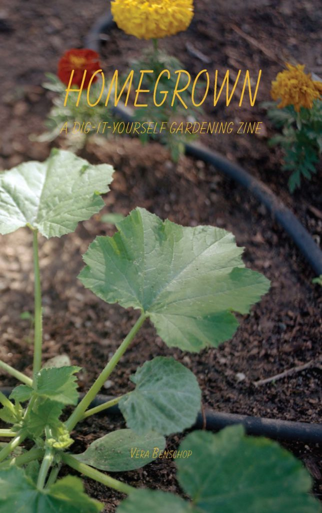 Homegrown: a Dig-it-yourself Zine